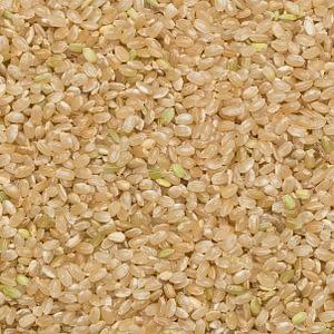 Rundkornigt ris